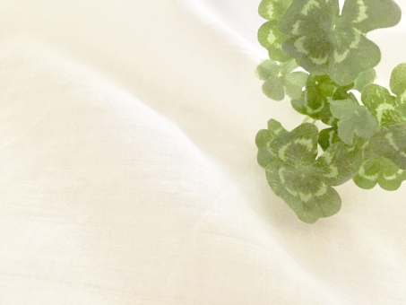 ノコア 無添加│界面活性剤、合成香料、合成着色料など不使用で安心