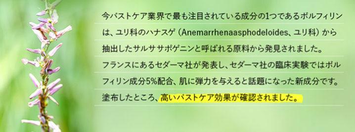 セルノート 全成分はこちら※(一財)日本食品分析センターで分析依頼